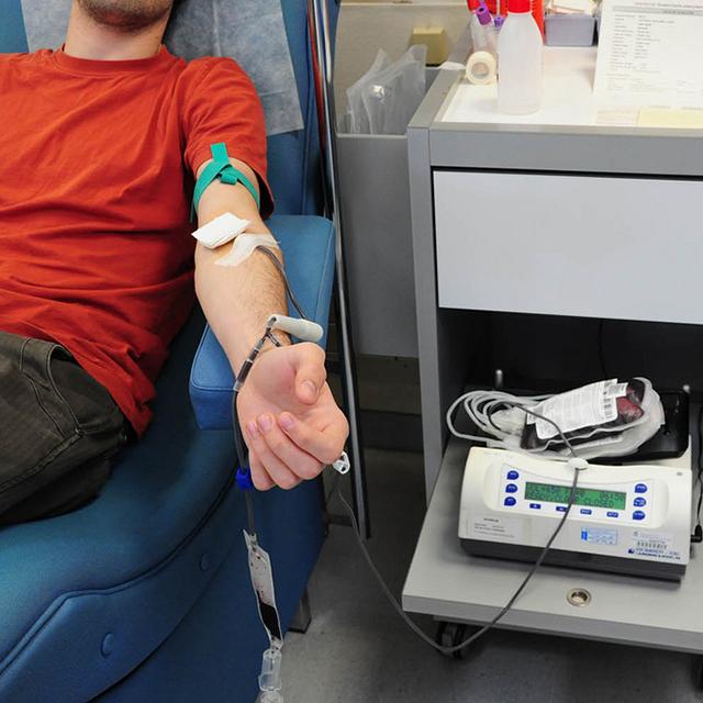 Missing Type – Warum unser Blut so kostbar ist