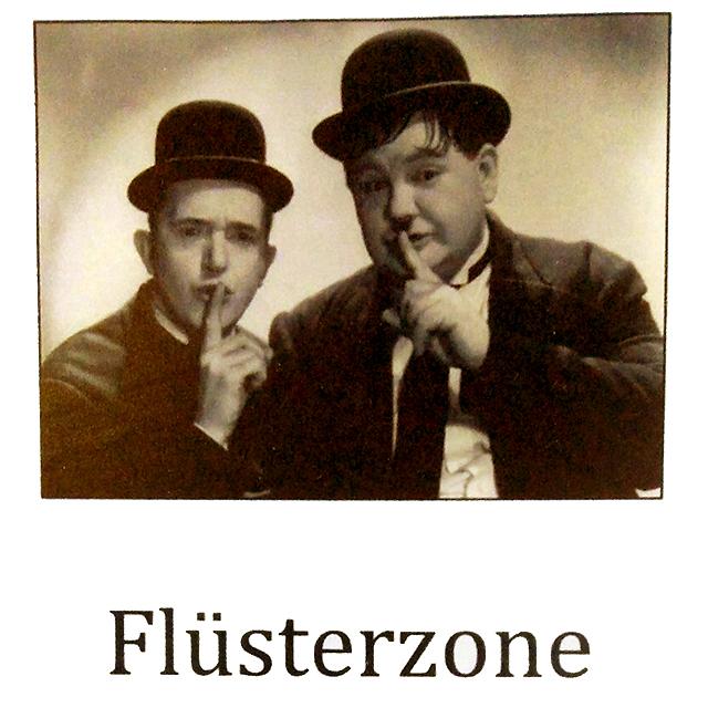 fluestern3