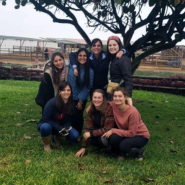 Mi Perú – Zwei Monate Pferdetherapie in Südamerika