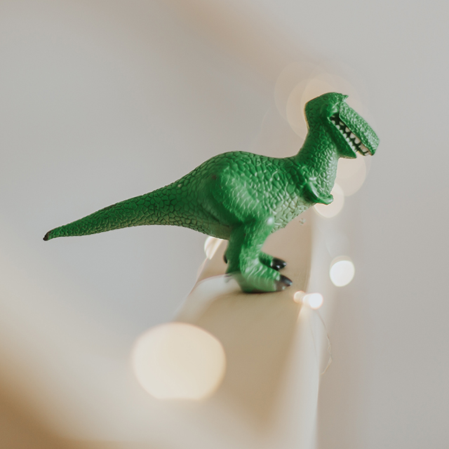 Mein erster Berufswunsch:</br></br>Paläontologe - geprägt von einer kindlich-fanatischen Faszination für Dinosaurier.
